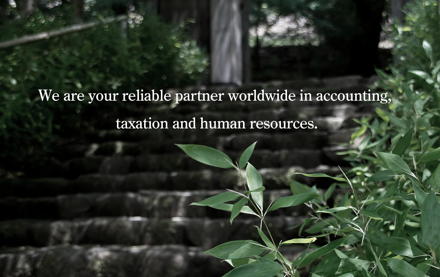 We are your reliable partner worldwide in accounting, taxation and human resources.