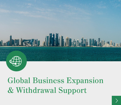 Global Business Expansion & Withdrawal Support