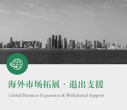 海外市场拓展・退出支援