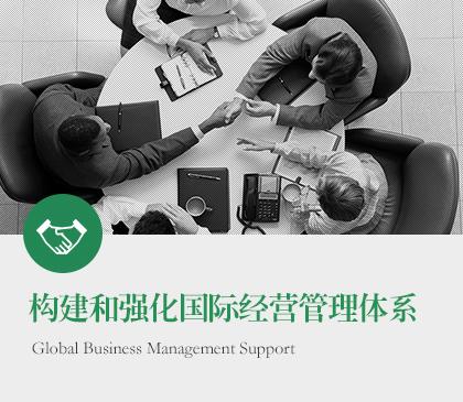 构建和强化国际经营管理体系