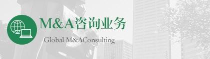 M&A 咨询业务